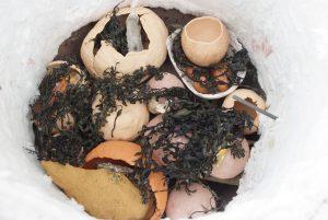 Dans le four au milieu des algues, huitres, sciure...