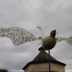 pigeon chamane