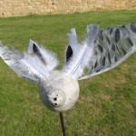 pigeon chamane 125€