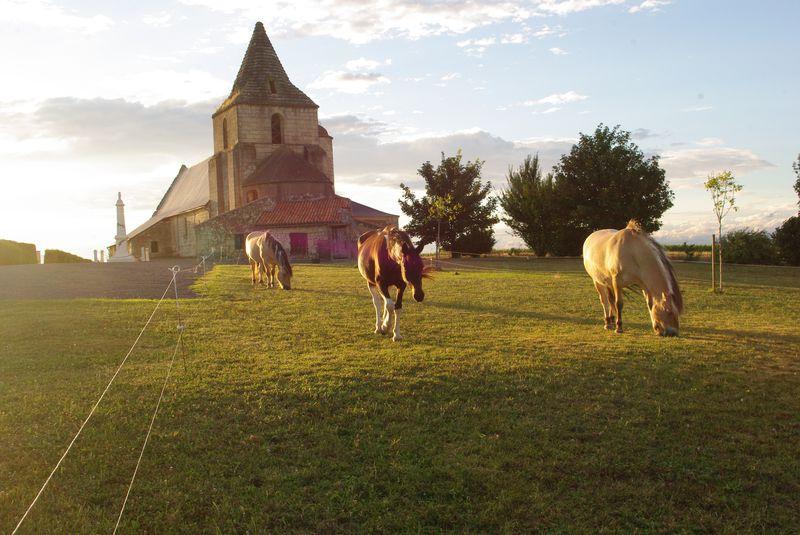 27 juillet, église de St Léger de Montbrun (Deux Sèvres)
