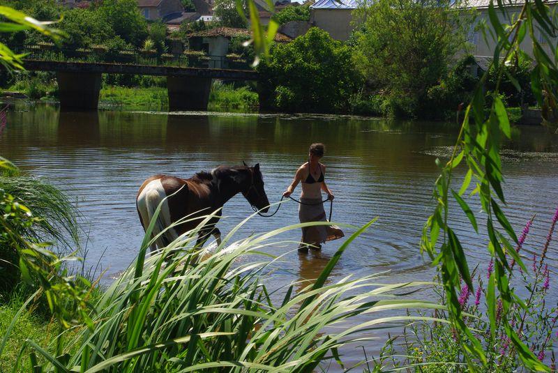 baignade avec Uda dans la jolie Vonne à Jazeneuil (86), 1er août