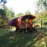 la roulotte demi-papillon au milieu des bois